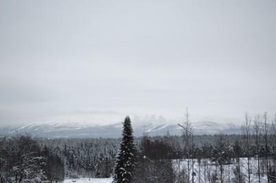 winter-129