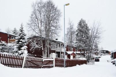 winter-131
