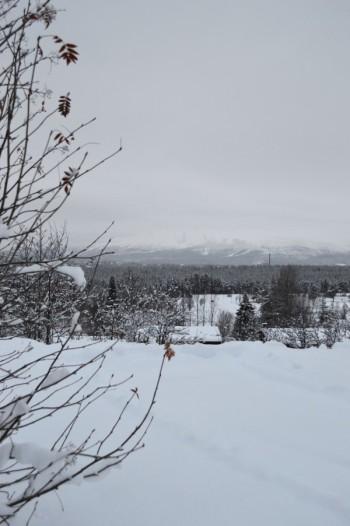 winter-140