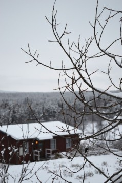 winter-154