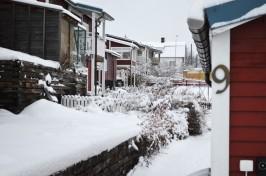 winter-160