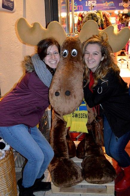 A Swedish moose!