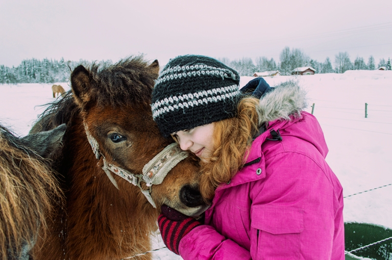 the cutest little horse!