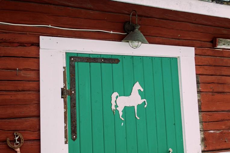 häst 078