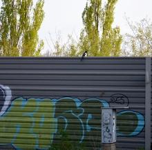 1 BERLIN 169