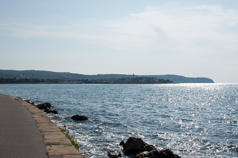 a shoreS