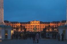 Schloß Schönbrunn, more pictures in the separate post!